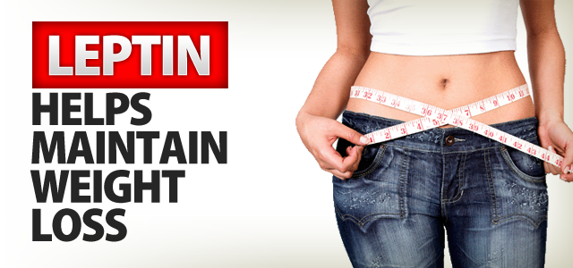 leptin and weight loss
